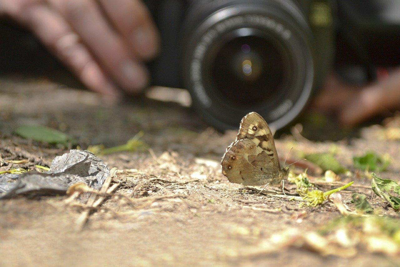 Hvad kan en fotograf egentlig, som du ikke kan?